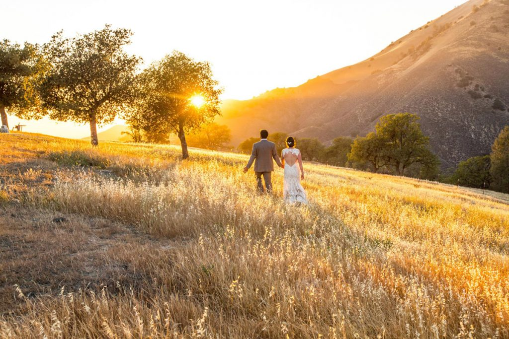 Paso Robles Wedding Photographers - Head & Heart Photography