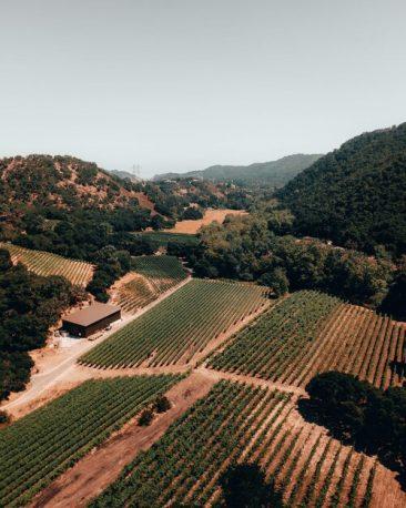 San Luis Obispo Drone Photography by Juliana Kunz